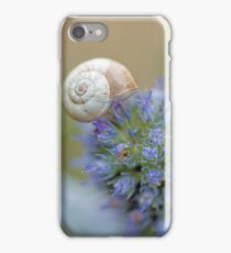 Snail on Sea Holly Flower iPhone Case/Skin