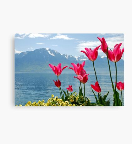 Tulips on the lakeside Canvas Print