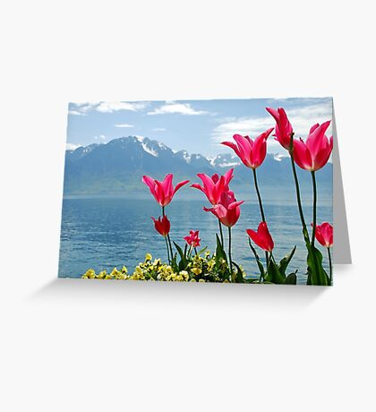 Tulips on the lakeside Greeting Card