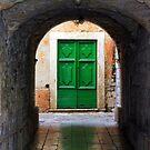 Green Door by Igor Shrayer