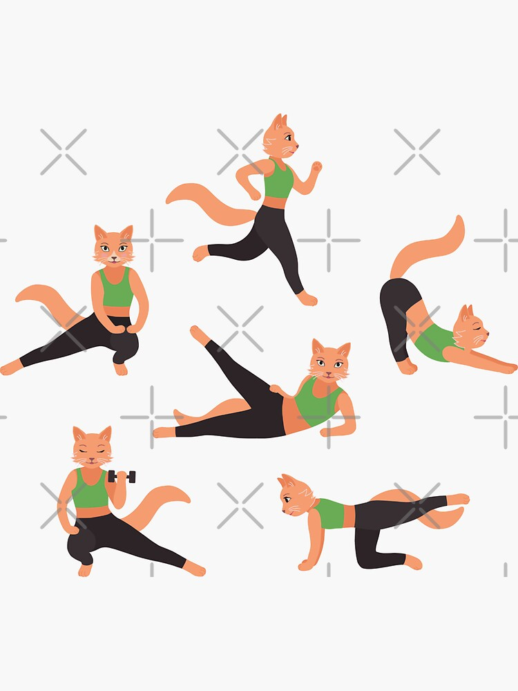Ginger Fitness Cats (with stickers) by nadyanadya