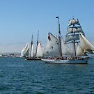 Tall Ships by travelingdixie