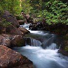 Mountain Stream by David Kocherhans