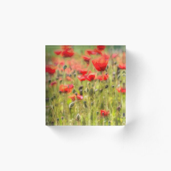 Monet Poppy Meadow Art Acrylic Block