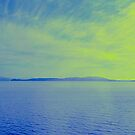 panorama in blue by Bruce  Dickson