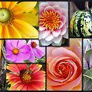 Gardener's Delight by AsEyeSee