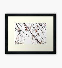 Tree of Dreams Framed Print