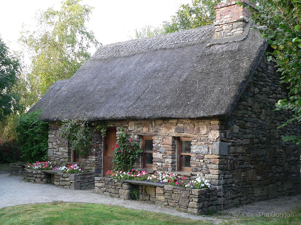 Old famine house replica newmarket co kilkenny ireland by pat duggan redbubble - House images new ...