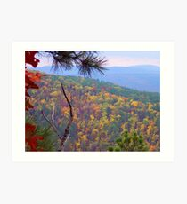 Ozark Mountains National Forest, Arkansas Art Print