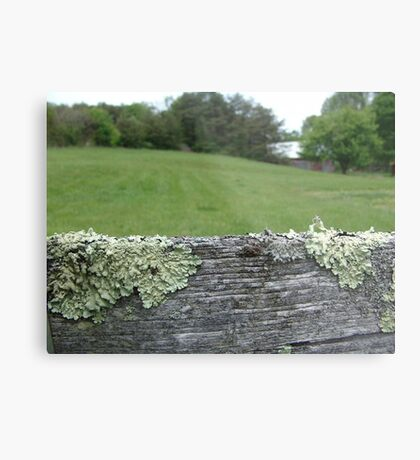 Good fences make good neighbors Metal Print