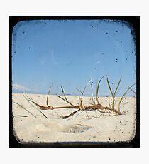 Grassy Dunes - TTV #4 Photographic Print