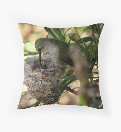 Costa's Hummingbirds  ~ 3 days old ~ 2nd series Throw Pillow