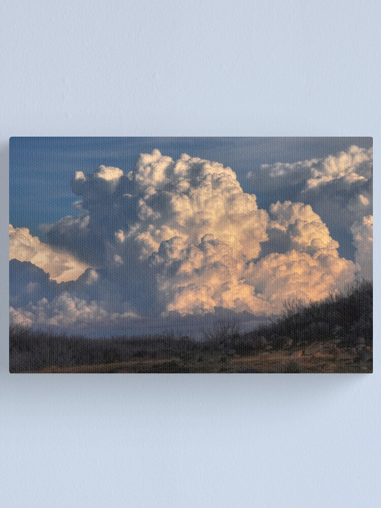 Alternate view of Clouds Canvas Print