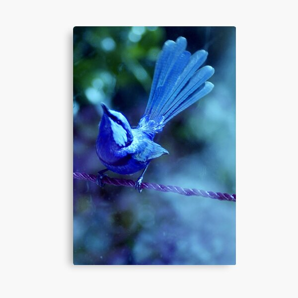 Look up Bluey Canvas Print
