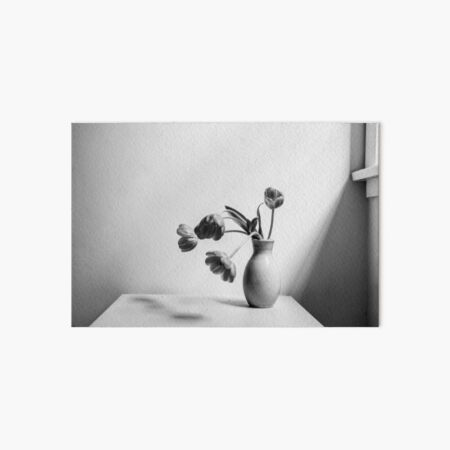 Wilting tulips by the window (black and white) Art Board Print