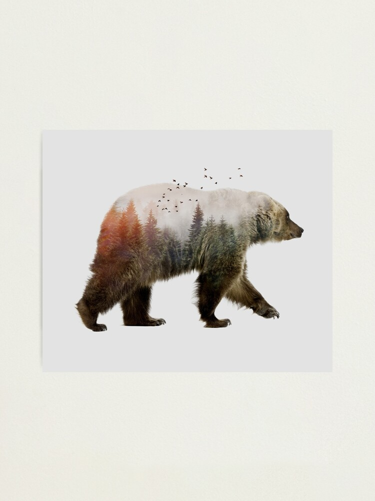 Alternate view of Bear Photographic Print