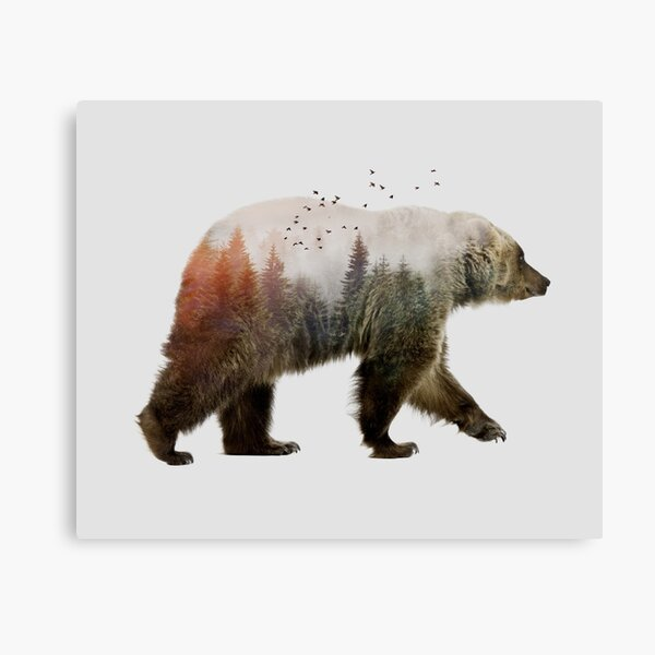 Bear Canvas Print