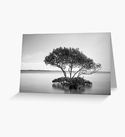 The Mangrove Tree Greeting Card