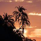 Twin Palms by Scott Carr