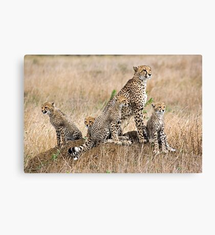 Family Portrait  Canvas Print
