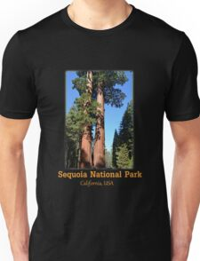 Giant sequoia trees in Sequoia National Park Unisex T-Shirt