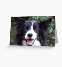 What about Bob! Greeting Card