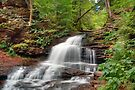Onondaga Falls in the Green Summer Forest by Gene Walls
