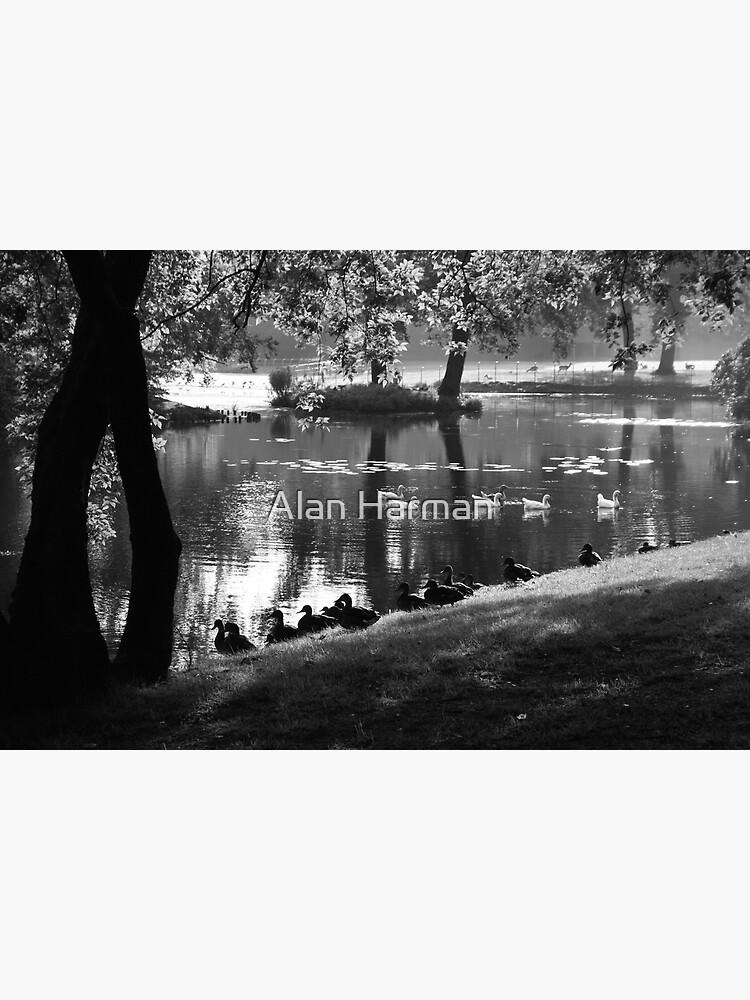 Park Life by AlanHarman