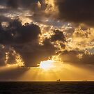The Golden Light of the Sunset by robcaddy