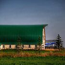 The Green Barn by Larry Trupp