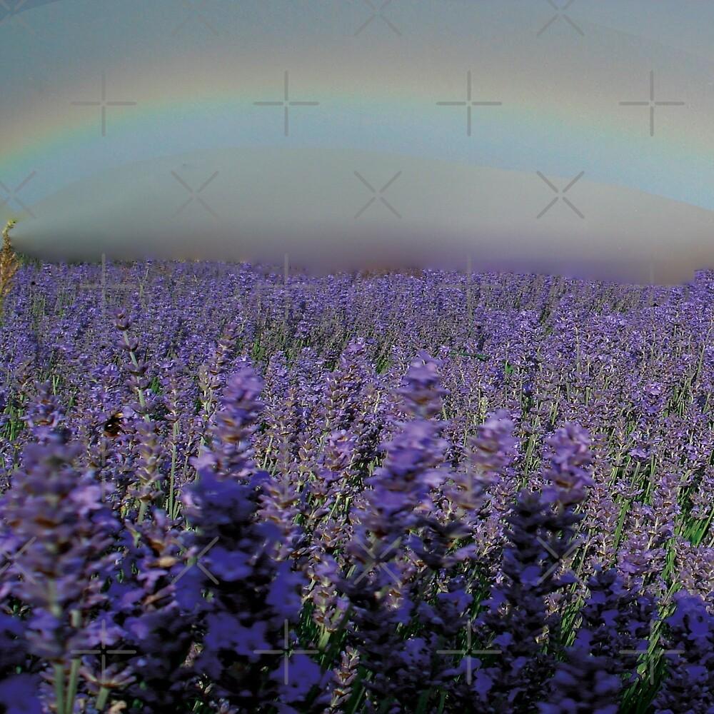 rainbow flower field by kajsabl