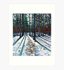 'Into The Woods' Art Print