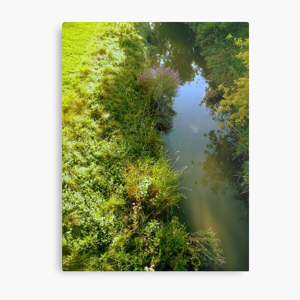 The Flow of an Ordinary Day Metal Print