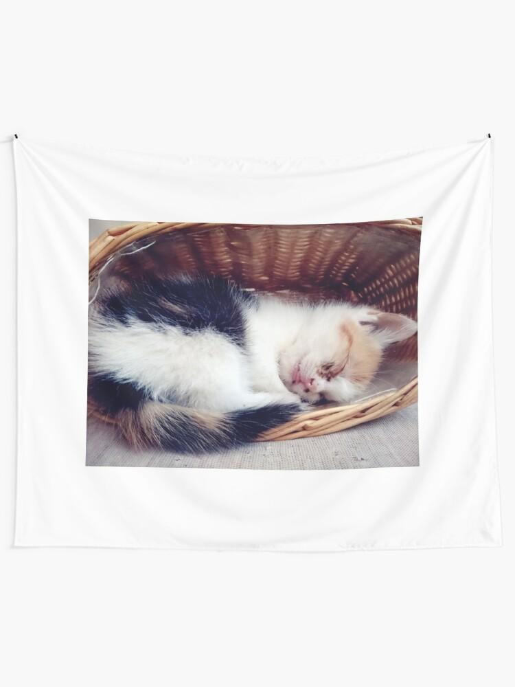 Alternative Ansicht von Süßer Katzen-Traum Wandbehang