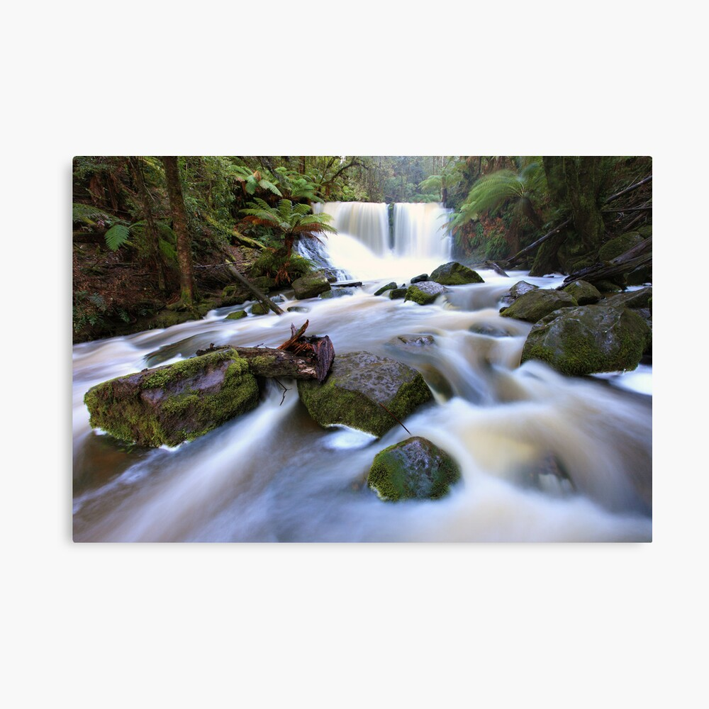 Horseshoe Falls, Tasmania, Australia Canvas Print