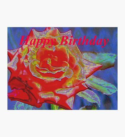 Peachy orange birthday rose Photographic Print