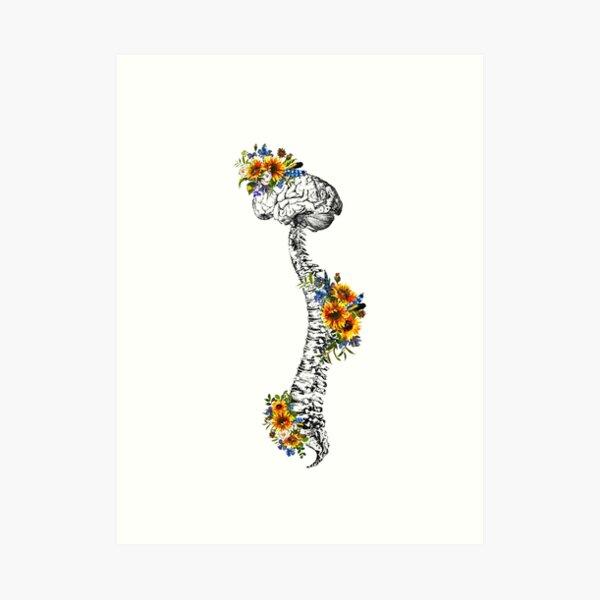 Human Spine with Brain Art Print