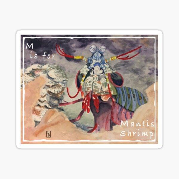 M is for Mantis Shrimp Sticker