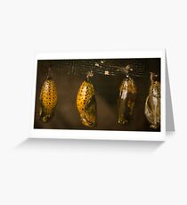 pupae Greeting Card