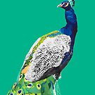Peacock No.1 iphone Case by christinahewson