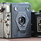 Painting with Light.....vintage cameras  by LynnEngland