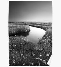 Mirror Mirror on the Marsh BW Poster