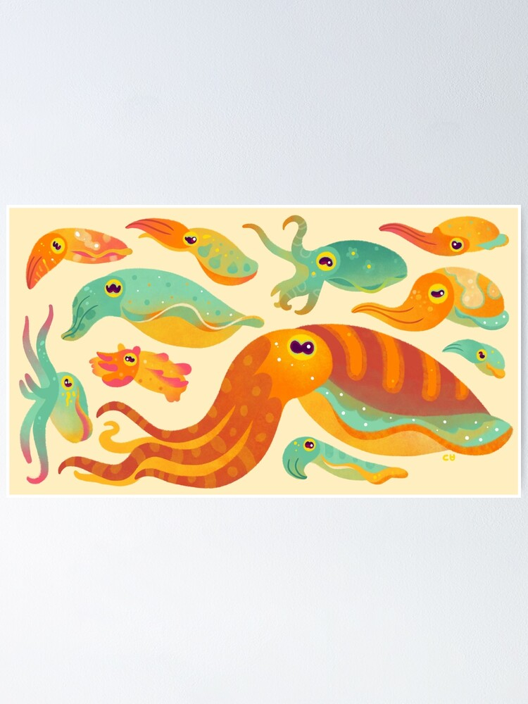 Alternate view of Cuttlefish Poster