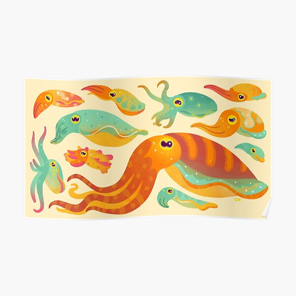 Cuttlefish Poster