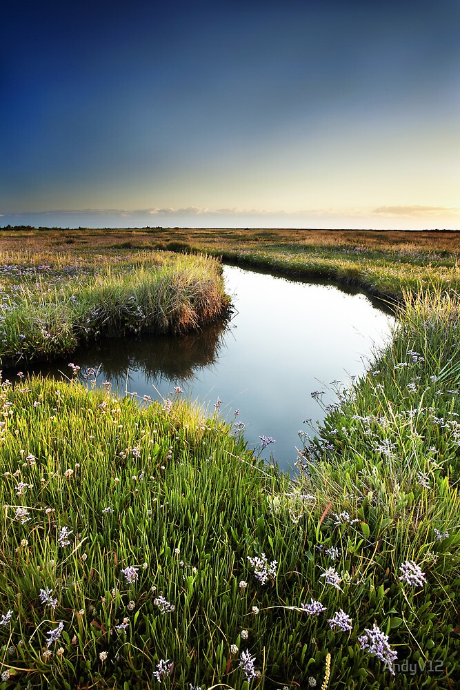 Mirror Mirror on the Marsh by Andy Freer