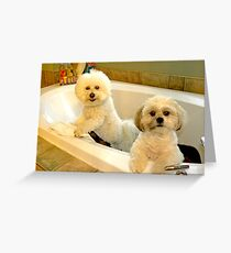 Baths with NO Water are Fun ! Greeting Card