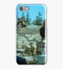 bears.  iPhone Case/Skin