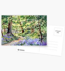 Bluebell Wood Postcards
