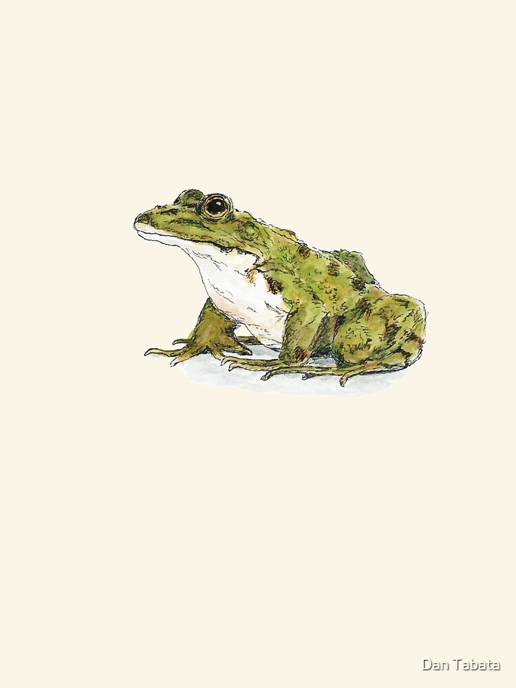 Frog by dmtab