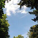 Blue Skies in Nottingham by Vikki Turton